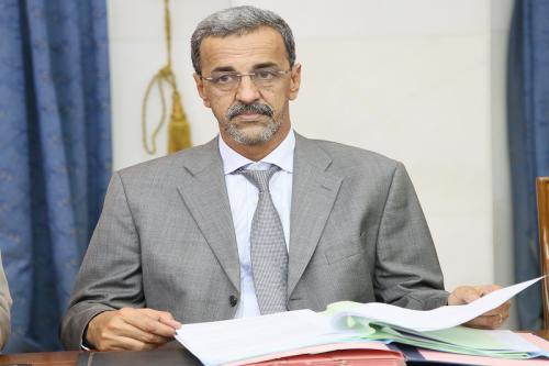 الدي ولد الزين: وزير التنمية الريفية