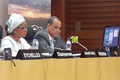 وزير الشؤون الخارجية والتعاون إسماعيل ولد الشيخ أحمد لدى مشاركته في الاجتماع الإفريقي بأديس أبابا.