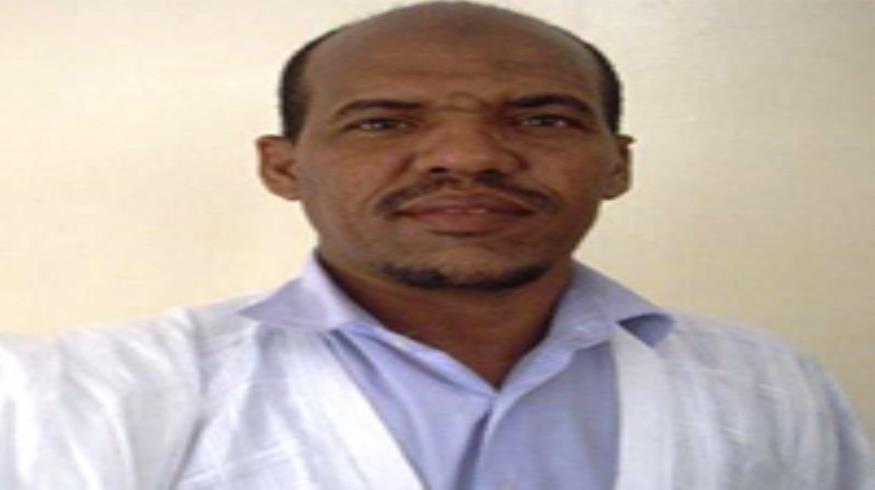 محمد الأمين ولد الفاظل: كاتب ومدون