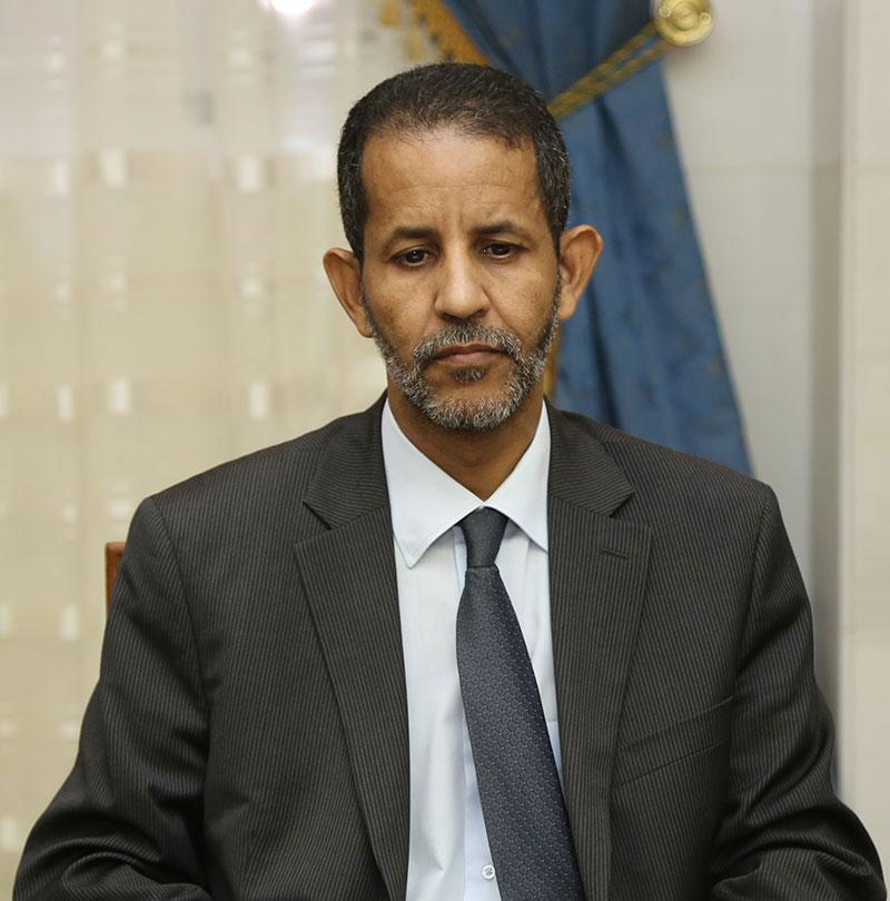 إسماعيل ولد بده ولد الشيخ سيديا: الوزير الأول الموريتاني