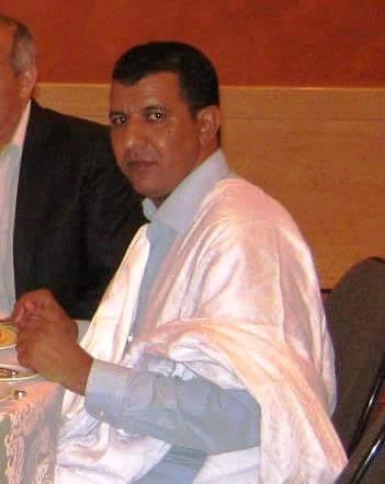 محمد محمود أبو المعالى