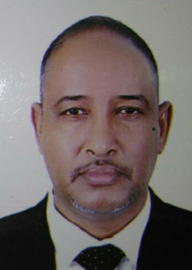 محمد ولد شيخن