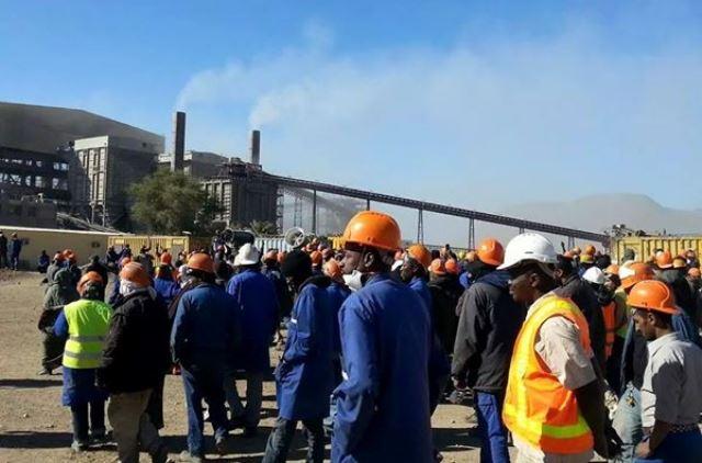 توزيع 600 قطعة أرضية على عمال شركة وطنية