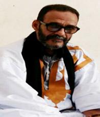الحسن ولد مولاي اعلي: كاتب صحفي
