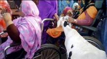 اثنتان من ذوي الإعاقة تقدمان شاة مساهمة في تمون إضراب عمال اسنيم (السراج)