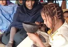 لقطة من الوثائقي حول ظاهرة لبلوح التي شهدت اختفاء على مدى واسع في موريتانيا حسب العديد من المراقبين (السراج)