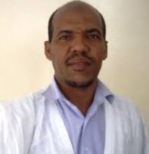محمد الأمين ولد الفاظل: كاتب ومدون.