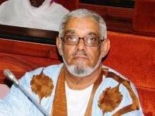 الأمين العام لحزب اتحاد قوى التقدم محمد المصطفى ولد بدر الدين