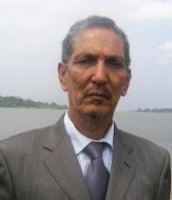 ماموني ولد المختار: كاتب صحفي.