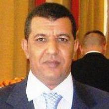 الكاتب محمد محمود أبو المعالي
