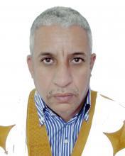 المختار ولد داهي: كاتب ودبلوماسي.