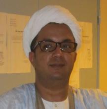 اسماعيل ولد الشيخ سيديا: كاتب.