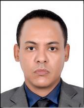 محمد الأمين مامين.