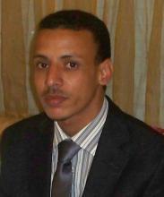 مولاي عبد الله ولد مولاي عثمان: كاتب